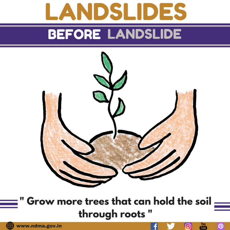 Grow more trees that can hold the soil through roots